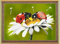 """Схема для бисера цветы, божьи коровки """"Летние краски"""", А3"""