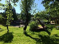 Детский отдых в Карпатах