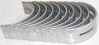 Комплект корінних вкладишiв /стд/ Fiat Doblo 1,9 JTD (2001-2012)