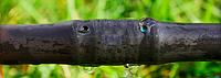 Многолетняя трубка эмитерная для капельного полива 20 см, толщина стенки 1мм 400 м PRESTO