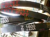 Приводний клиновий ремінь Z(0)-1600, EXCELLENT 1600 мм Excellent, фото 2