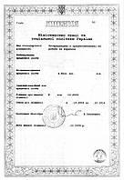 Лицензия на трудоустройство за границей
