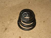 Пружина наконечника тяги рулевой МАЗ (МАЗ). 5336-3003069