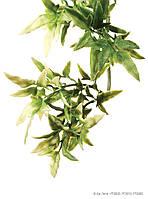 Искусственное растение Exo Terra Jungle Plant Croton для террариума