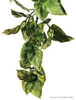 Искусственное растение Exo Terra Jungle Plant Amapallo для террариума