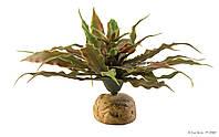 Искусственное растение ExoTerra Star Cactus для террариума