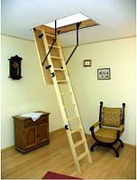 Чердачная лестница OMAN Prima 110x60 h280см