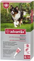Advantix (Адвантикс) Капли от блох и клещей для собак весом от 10 до 25 кг