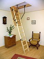 Чердачная лестница Oman Easy Step S (120x70) H280