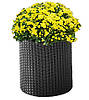 Плетеный цветник Medium Cylinder Planter серый