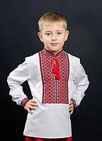 Сорочка для хлопчика машинна вишивка №0113