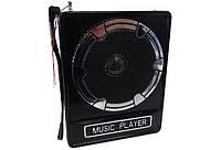 Портативная колонка MP3 USB FM NS-017U, фото 1