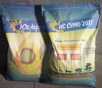 Семена подсолнечника НС Сумо 2017 , фото 1