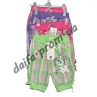 Котоновые шорты для девочек 878 (3-7 лет) оптом со склада в Одессе