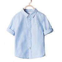 Детские рубашки для мальчиков и девочек осень/зима 2019