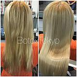 H-Brush White Care (Белый ботокс для восстановления волос) Honma Tokyo набор 2х250мл, фото 4