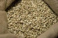 Зеленый Кофе Робуста (Вьетнам) мытый scr18 - Кофе оптом (опт) CoffeeOpt
