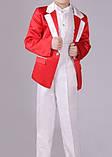 Сценический костюм для мальчика, фото 3