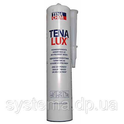 TENALUX (Теналюкс) 111S - Однокомпонентный герметик для строительных конструкций, 290 мл, 430 г, фото 2