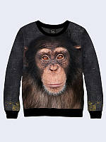 Свитшот Шимпанзе фото