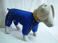 ЛОРИ Комбинезон для собак Мех 36*47см (такса маленькая)