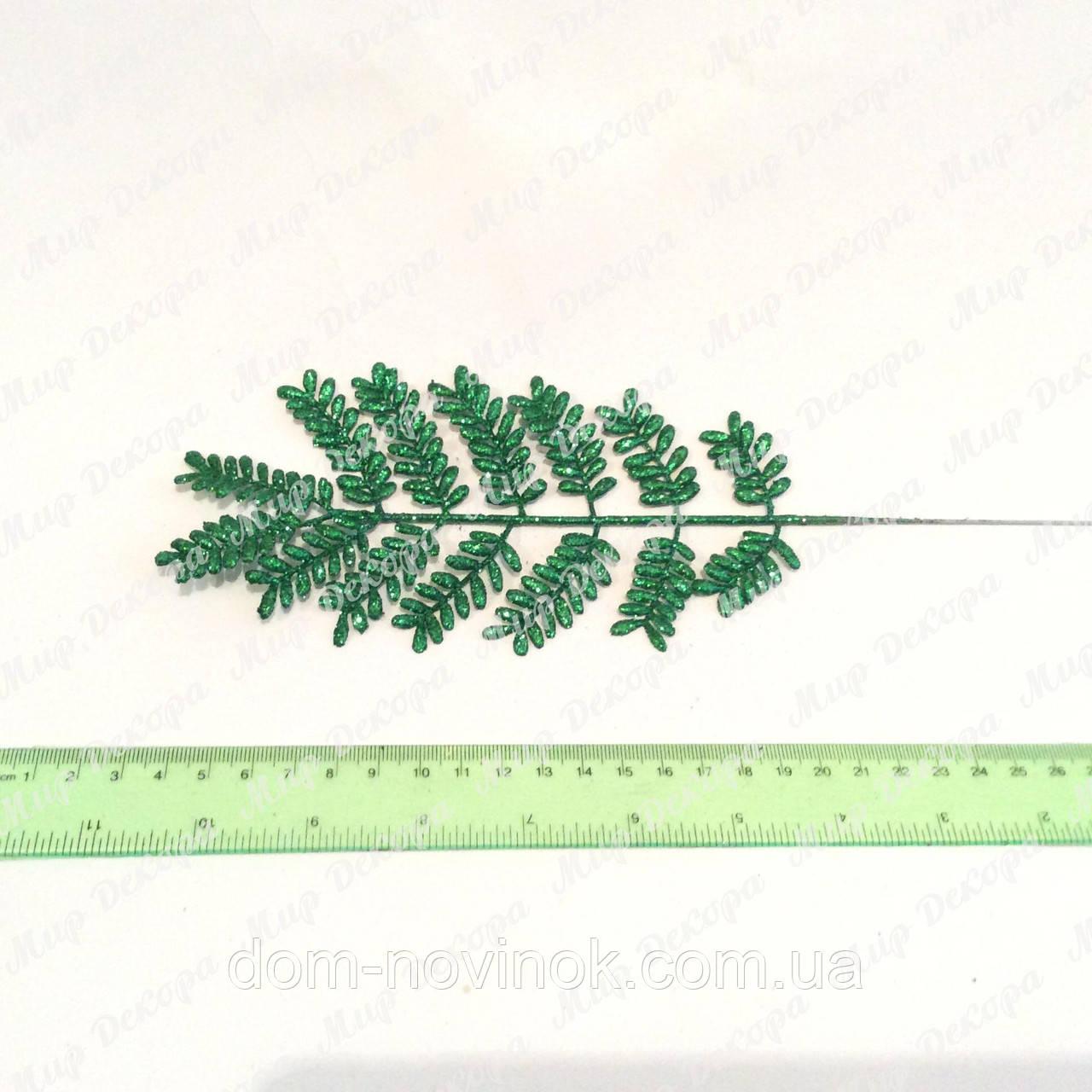 Лист папоротника зеленый (10 Лист папоротника зеленый (10