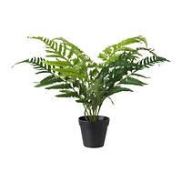 """IKEA """"ФЕЙКА"""" Искусственное растение в горшке, папоротник"""