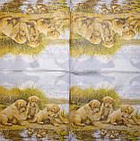 Редкая салфетка Щенки у озера 1773, фото 2