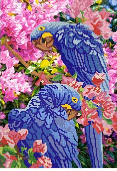 Схема для вышивания бисером Попугаи РКП-066