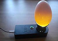Овоскоп для проверки яиц Сяйво