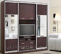 Шкаф-купе в гостиную с нишей для телевизора Камелот, Киев