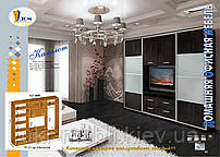 Шкаф-купе зеркальный с нишей для телевизора, шкаф купе под заказ, гостиная купе Камелот, Дом