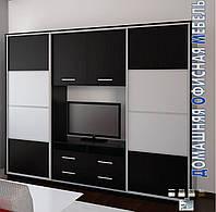 Шкаф-купе с нишей для телевизора Камелот, Дом