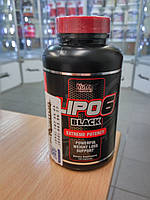 Жиросжигатель Nutrex Lipo 6 Black - 120 caps топ жиросжигатель США