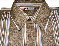 Рубашка Basic Style (S/37-38), фото 1