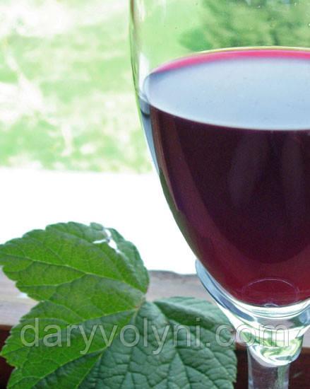 Вино із смородини? Смак небожителів!