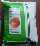 Семена лука Титан среднеспелый (115дней) высокоурожайный сорт, Allium Италия