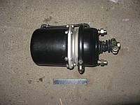 Камера торм. с пружинным энергоакк(в сборе,тип 20/20) (ДК)  100.3519100