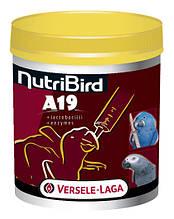 Versele-Laga NutriBird A19 МОЛОКО (for baby-birds) корм для пташенят великих папуг, 800 г