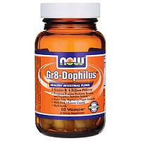 Gr8 - Дофилус (Gr8-Dophilus), 60 капсул из США купить