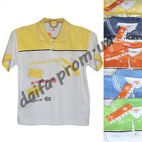 Детская котоновая футболка поло MR2 (3-7 лет) оптом со склада в Одессе (7км).