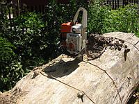 Срезание деревьев недорого