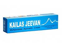 Кайлаш Дживан 12 грм., Kailas Jeevan Cream. Многофункцианальное лекарство.