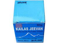 Кайлаш Дживан 30 грм., Kailas Jeevan Cream. Многофункцианальное лекарство.