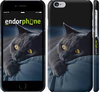 "Чехол на iPhone 6 Дымчатый кот ""825c-45"""