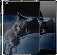 "Чехол на iPad 5 (Air) Дымчатый кот ""825c-26"""