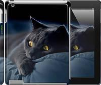 """Чехол на iPad 2/3/4 Дымчатый кот """"825c-25"""""""