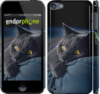 "Чехол на iPod Touch 5 Дымчатый кот ""825c-35"""