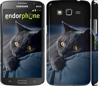 """Чехол на Samsung Galaxy Grand 2 G7102 Дымчатый кот """"825c-41"""""""