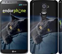 "Чехол на LG G2 Дымчатый кот ""825c-37"""